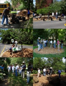 6-19-14 PHOTO COLLAGE-CEC VOLUNTEER DAY 1