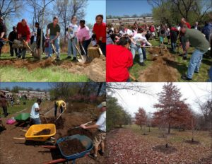 7. Oak Grove, initial planting Earth Day 2007 with Governor Martin O'Malley