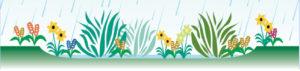 Graphic_Rain_Garden_5